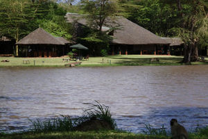 Safari Camp, Lodge for safaris in Kenya