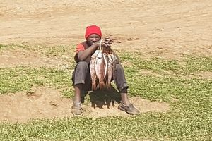 Fish seller - Fresh fish on the roadside at Naiwasha